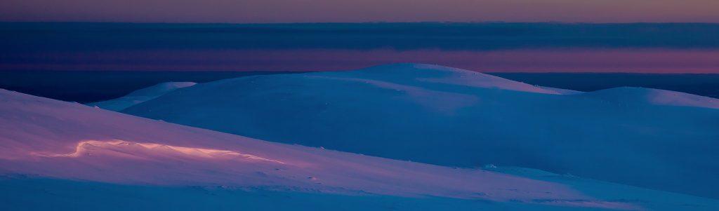 Vinnerbilder Mars 2017